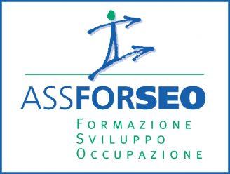 Logo_AssForSeo