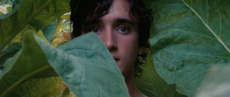 Immagine del film Lazzaro Felice